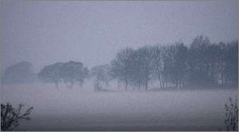 misty-fields-little-bromley-essex